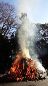 どんど焼き 燃え上がる炎と立ち昇る煙