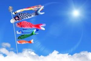 鯉のぼり 青空 太陽