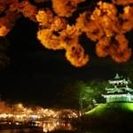 日本三大夜桜 髙田公園桜まつり