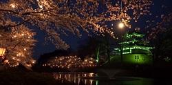 ライトアップ 髙田公園