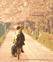 春休み 大学