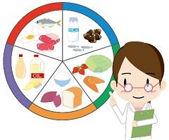 栄養 円グラフ 管理栄養士