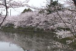 夙川公園 アクセス方法
