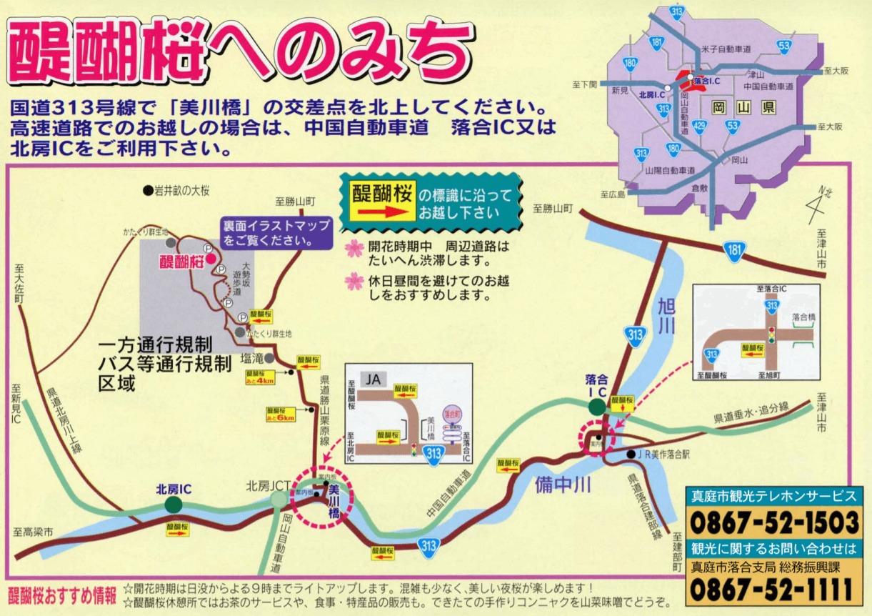醍醐桜 地図