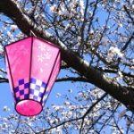 相模原市民桜まつり 日程