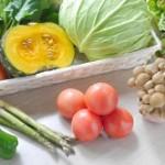 春野菜 種類