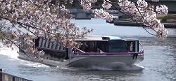 隅田川テラス お花見スポット