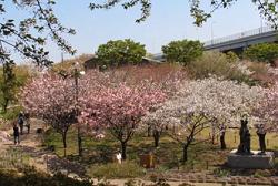 都市農業公園 穴場