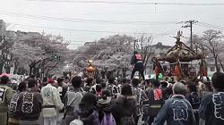 神輿パレード 必見