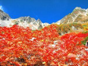 青空と山の紅葉