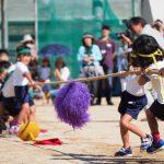 小学生 運動会 綱引き