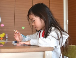 小学2年生 自由研究