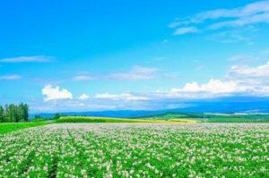 北海道 景色