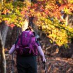 紅葉の中を登山する女性