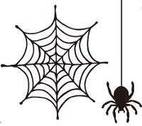 蜘蛛の巣 除去