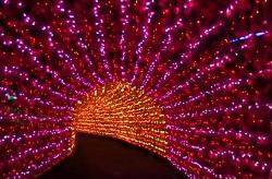 アパリゾート上越妙高イルミネーション 光のトンネル