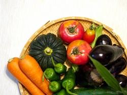 新鮮 採れたて野菜