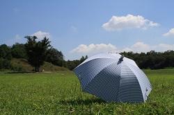日傘 コンパクト