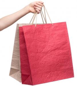 お土産 紙袋