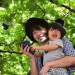 ぶどう狩り 栃木県 人気