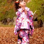 七五三で3歳の女の子の着物の選び方!相場やレンタルについて。