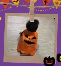 かぼちゃ マント 赤ちゃん ハロウィン
