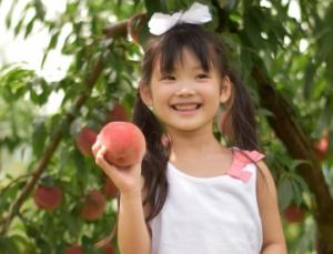 桃を収穫した女の子