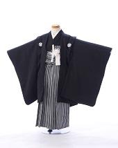 黒紋付袴 ストライプ