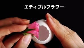 卵 エディブルフラワー