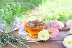 たんぽぽ茶 効能