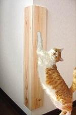 コーナーカバー 猫