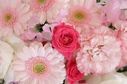 花 バラ ガーベラ