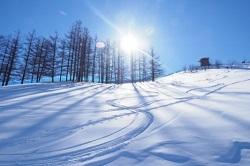スキー場 おすすめ