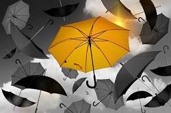 傘 お手入れ方法