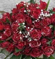 クリスマス バラの花束
