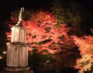 知恩院 紅葉 ライトアップ 聖観音菩薩立像