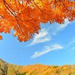 紅葉関東穴場スポットをご紹介!おすすめの温泉で紅葉を満喫。