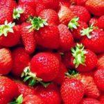 いちごの旬の季節!おいしい時期は?主な品種や特徴をご紹介。