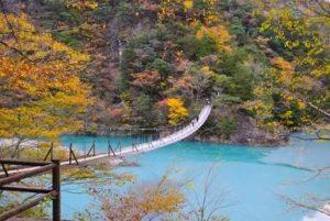 寸又峡 紅葉と夢の吊り橋