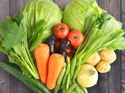 野菜 不足気味
