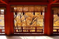 談山神社から見る紅葉
