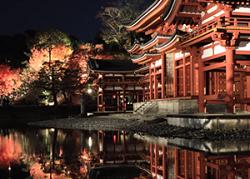 平等院鳳凰堂 ライトアップ 水面に映り込む紅葉景色