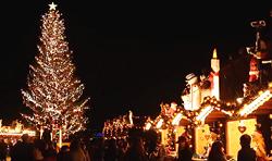 クリスマス 横浜赤レンガ倉庫