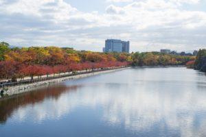 大阪城公園 紅葉