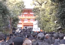 大宮氷川神社 混雑