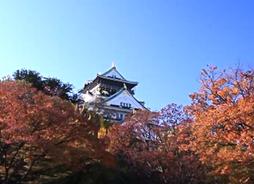 大阪城公園 紅葉 見どころ