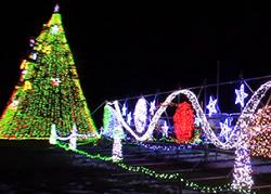 小岩井ウィンターイルミネーション クリスマスツリー