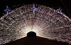 小岩井ウィンターイルミネーション 光のトンネル