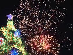 クリスマスツリー 花火