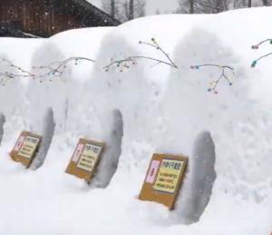 いわて雪まつり かまくら食堂